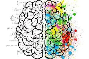 ma-como-funciona-nuestro-cerebro