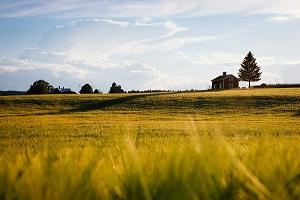 ma-agricultura